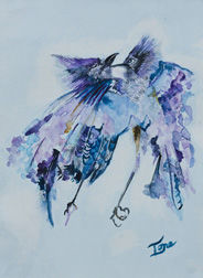 Squabble, still life bird watercolor